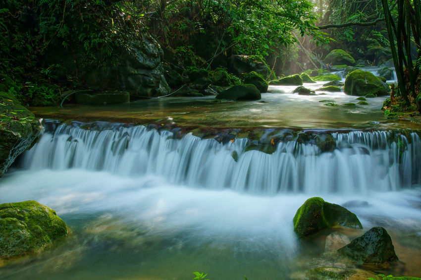 Early morning warm sun shines in the beautiful forest waterfall valley. Light Sunlight Beauty In Nature Day Flowing Water Forest Green Color Long Exposure Motion Natural Environment Nature No People Outdoors Peaceful Pure Water River Scenics Stream Tranquil Scene Tranquility Tree Valley Warm Water Waterfall