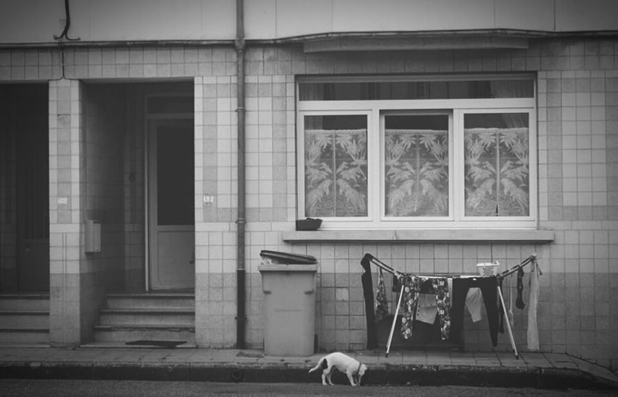 Belgium. Belgique. Belgie. Belgien. Etc. Street Life Black And White Escape Urban Escape Urban Life House Enjoying Life Streetphotography