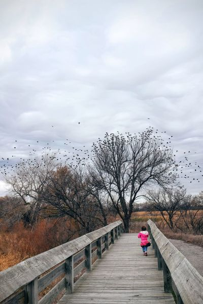 Photo essay - A day in the life. Platte River Grand Island, Nebraska November 6, 2016 A Day In The Life America Camera Work Cloud - Sky Day Eye Em Nature Lover Eye For Photography MidWest Nature Nature Nebraska On The Road Outdoors People Photo Diary Photo Essay Road Trip Sky Storytelling Travel Photography Tree Visual Journal Walkway The Street Photographer - 2017 EyeEm Awards