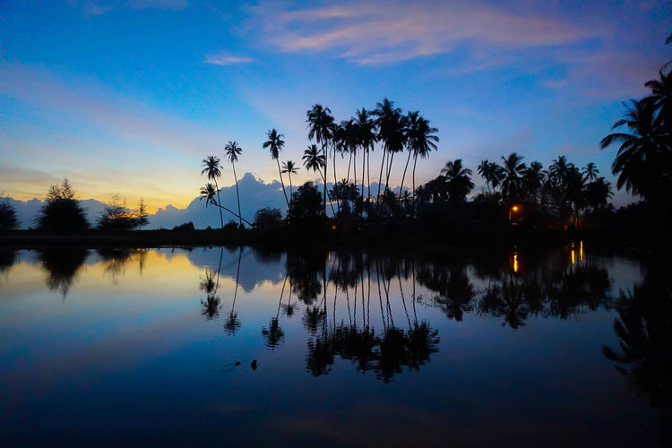 Reflection of silhouette coconut palm trees on calm lake against sky at dusk