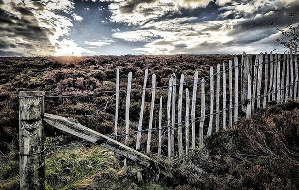Moorland Glory - Loved the earthly tones of the rustic old fence rooted with heather. HDR really brings out the landscapes textures. Peak Viewpoint Fence Rustic Textures HDR Calm Sunset WOW Spring Sunshine Lines Beautiful Glow Sky Nature Cairnomount Aberdeenshire Landscape POTD Photooftheday Visitaberdeenshire Visitabdn VisitScotland Britains_talent loves_scotland brilliantmoments @visitabdn
