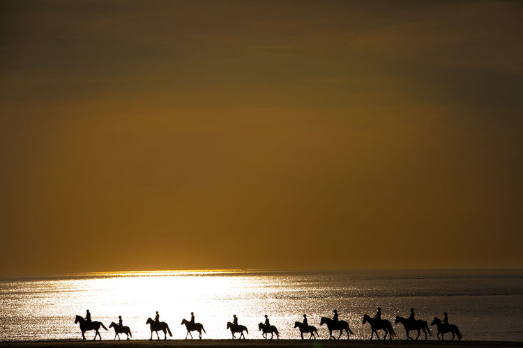 Silhouette people riding horses on sea shore against sky during sunset