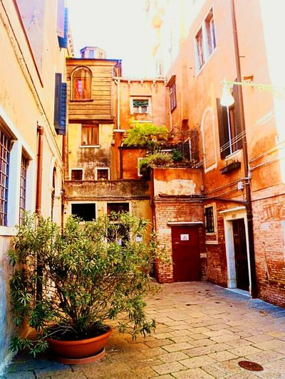 Italy Venezia Italian Place Venezia Italia Colors