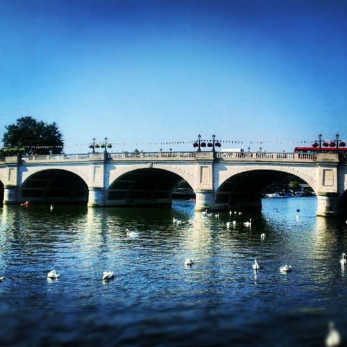 Kingston Bridge. Lofi Kingston Thames