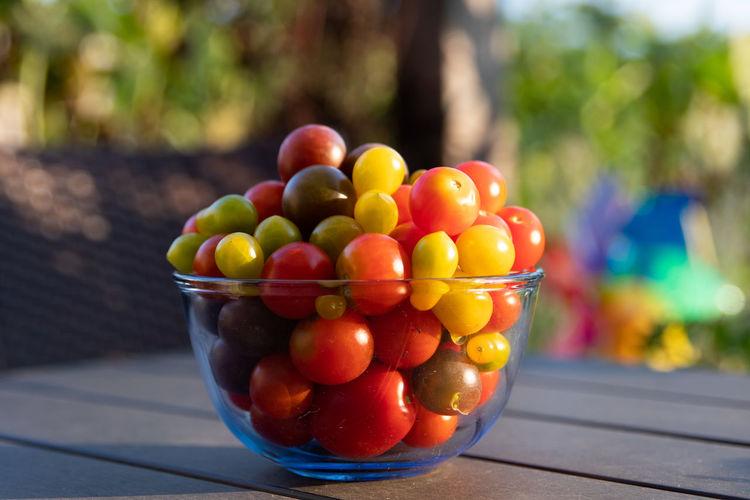 Tomato Tomatoes Tomato Plant Tomatenpflanze Garten Garden Fruit Healthy Lifestyle Close-up Food And Drink Cherry Tomato