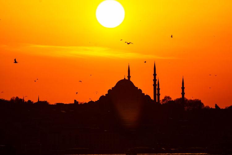 Silhouette birds flying against sky during sunset