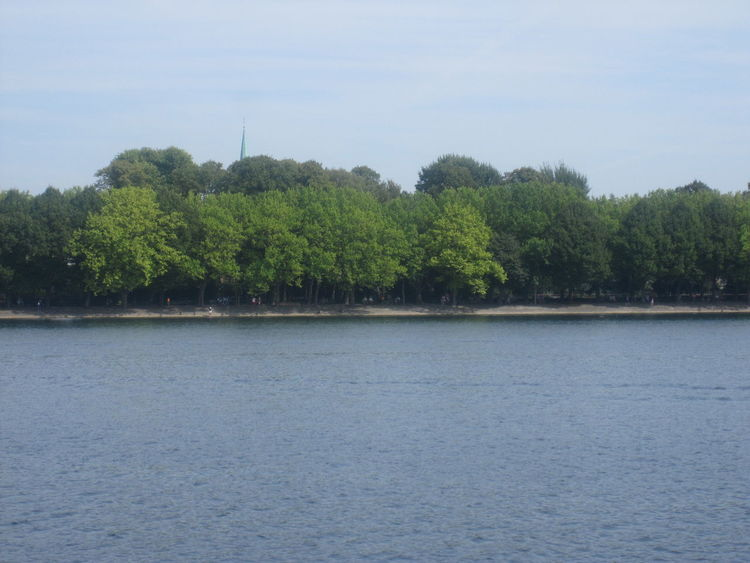 Beauty In Nature Berlin Blue Calm Countryside Day Green Color Greenwichpromenade Growth Idyllic In Front Of Lake Nature Non-urban Scene Outdoors Remote Scenics Sky Solitude Tegeler See Tranquil Scene Tranquility Tree Water Waterfront