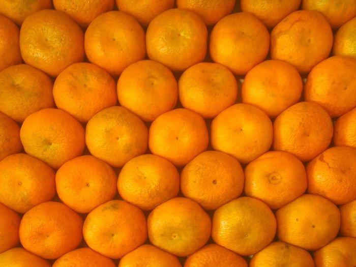 Organized Oranges. Freshness Full Frame Citrus Fruit Backgrounds Healthy Eating Fruit Orange Color Food Grid Orange Oranges Orange - Fruit Organized Beautifully Organized Beautifully Arranged Arrangement Arranged Cells Fresh On Eyeem  Close-up Round Objects Fruits Wallpaper Background Backdrop