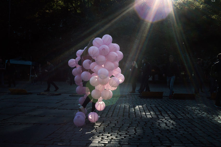 Balloon Celebration Day Flower Nature No People Outdoors Sunlight The Street Photographer - 2017 EyeEm Awards