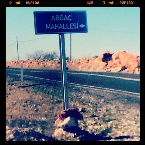 Nerede oturduğunu söyleyememesi onun kabahati olmamalı :))) Halfeti Şanlıurfa Türkiye