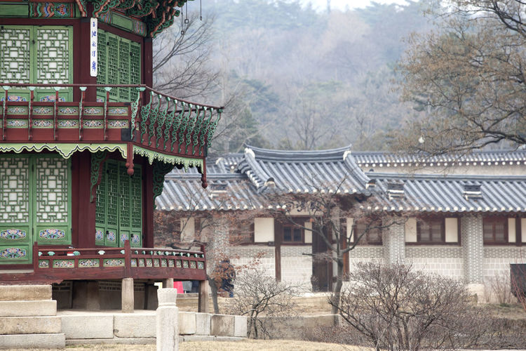 Architecture Building Building Exterior Built Structure City Day Exterior Gyungbok Palace Historic Place House Hyangwonjeong Nature No People Outdoors Palace Railing Residential Building Residential Structure Roof Sky Sunlight Travel Destinations Tree Window