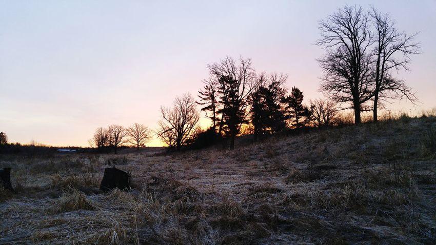 Minnesota Morning Sunrise Frozen Swamp Clouds And Sky Morning Sky Spring Has Arrived Minnesota Skies Frosty Morning
