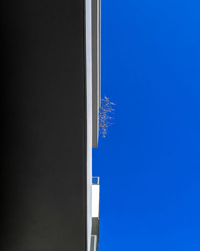 Blue No People Clear Sky Sky Ralfpollack_fotografie Minimalism Minimalist Photography  Googlepixel3 Copy Space Built Structure Architecture Building Exterior Low Angle View Building Outdoors Sunlight City Wall - Building Feature Directly Below