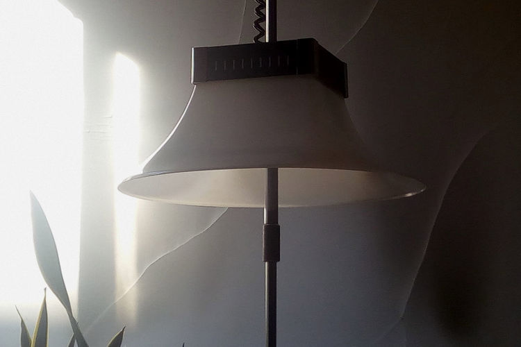 Piantana anni 60 ArtWork Close-up Day Electric Lamp Focus On Foreground Growth Illuminated Lamp Lighting Equipment Ligth And Shadow Low Angle View Modern No People Piantana Anni 60 Sunny Day Interior ViewsVintage Lamp Interior Design Interior Geometry Home Is Where The Art Is