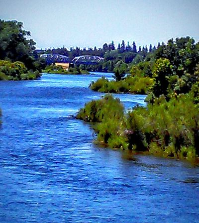 Nature American River Trees Taking Photos ❤ Trees And Nature Sacramento, California Trees And Sky Trees And Bushes Bridge - Man Made Structure Bridge Porn Bridge View Over River Showcase July On The Way