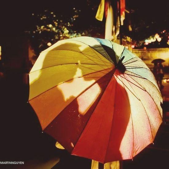 Umbrella Colorofthenight
