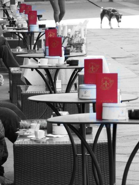 Coffee time in Trieste Italy Trieste Trieste Piazza Unita Caffedeglispecchi