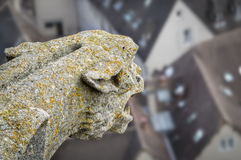High Angle View Of Gargoyle On Chartres Cathedral