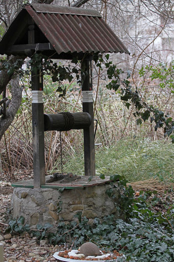 Well. Water well in the forest. Rural well with roller and chain. Agriculture Antique Farm Fountain Nature Rock Spring Water Chain Forest Garden Old Resources Source Source Of Water Stone Village Vintage Water Water Well Water Well Drilling,water,wishing Well,water Pump,water Well Africa,spring Water,old Water Well,groundwater,well,design,stone,old,ancient,deep,pulley,wooden,background,farm,village,hole,grass,garden,rock,agriculture,rural,town,rope,vintage,antique,structu Well
