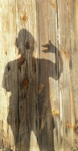 Full Frame Backgrounds Sunlight Textured  Close-up Outdoors Day Shadow Hand Animal Shape Showing Detail Animal Shapes Animal Shadows Details Shadows Weathered Wood Old Door It's Me People Shadow People Shapes Making Shadows Making Shapes Wooden Texture Shapes And Forms Designs And Lines