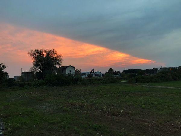 Sunset Sky Sunset Architecture Built Structure Building Exterior Plant Cloud - Sky