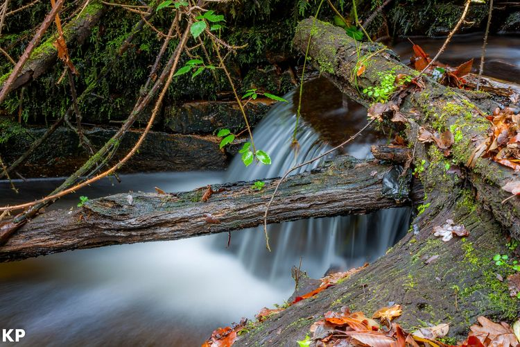Water Outdoors Nature No People River Beauty In Nature Day Tree Fishing Net Forest Waterfall