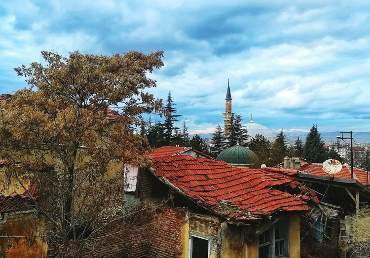 Odunpazarıevleri EyeEm Best Shots Old City Old Sky Blue Day Tree Roof Sky Architecture Building Exterior Built Structure Cloud - Sky Traditional Building High Section Window Box Electricity Tower Flower Tree Outside Residential Structure Palm Frond Outline Growing Contrail