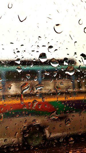 Rain Drop Nature