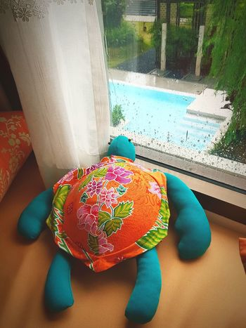 An All day raining Day Water No People Love Photography Journey Owntime EyeEmNewHere Swimming Pool Travelphotography Rainy Season Raindrops Rain Rainy Days Turtle Doll Daybed Pillow Window Cloudy Sky Cloudy Day