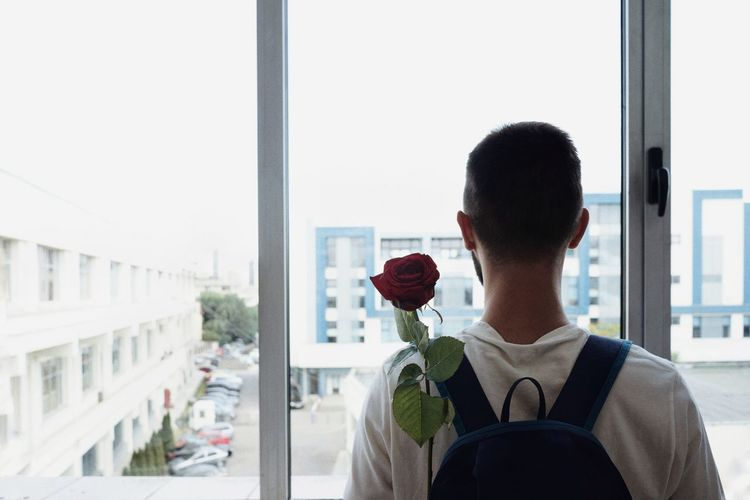 Rear View Of Man With Red Rose Against Window