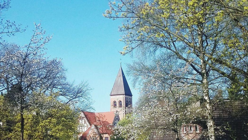 Good Morning! Nature Hamburgnaturepic Nature April 2017 Spring 2017 Beauty In Nature Blossom Blossoms  Blue Sky Sun Church Hamburg
