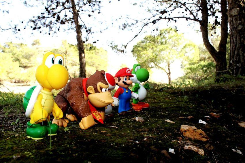 Super Mario Forest Donkeykong Yoshi Koopa Troopa Toad Nature Landscape Dolls