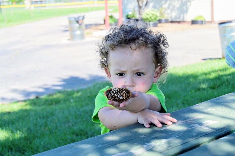 Day Grass Childhood Outdoors Full Length Nature Taylor Bonding Innocence Park Children Only Boys Crulyhair Pinecone