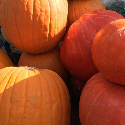 Full frame shot of pumpkins at market stall