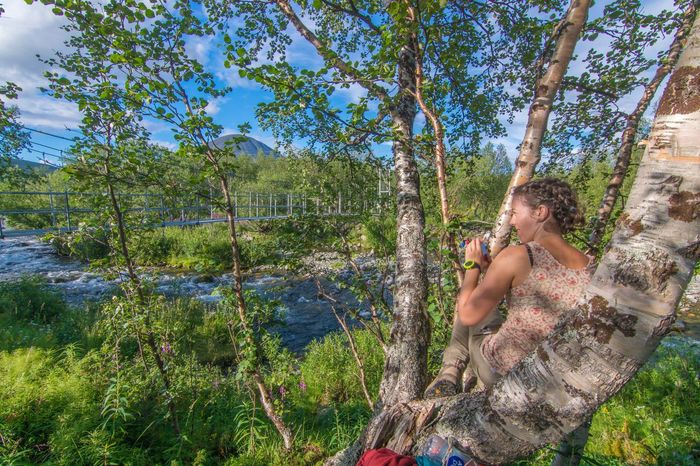 Tree Forest Leisure Activity Person Nature Day Outdoors Vacations Beauty In Nature Summer Young Adult Fjallravenclassic Sweden Lappland Hiking