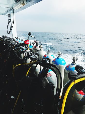 diving time Scubadiving Ocean Seacreatures Adventure