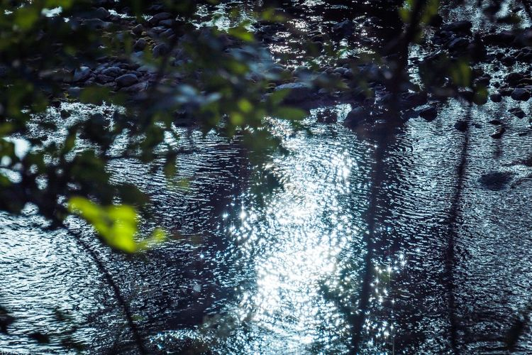 Water Reflections Eye4photography  Open Edit Enjoying Life EyeEm Nature Lover Nature On Your Doorstep