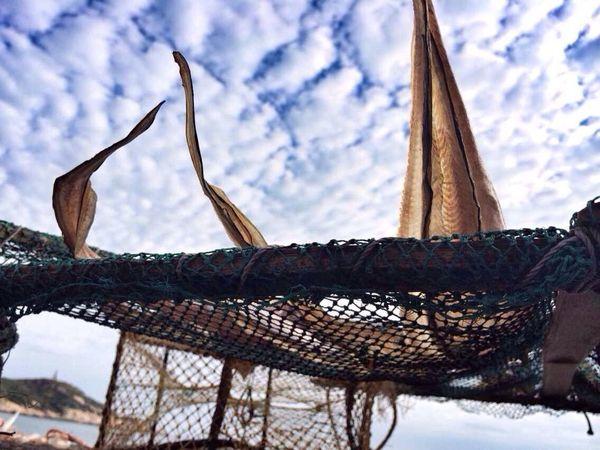 東極島 舟山 浙江 Photography 東極島,東極島,終於後會有期了!在充滿了魚腥味的空氣裡,等待星軌和銀河。