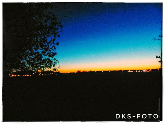 Sweden The True Story Astronomy Tree Sky