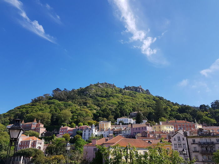 View of Sintra Sintra Portugal Mountain Fortress Tree City Sky Cloud - Sky Architecture Residential Structure Residential District Human Settlement Tiled Roof  TOWNSCAPE Cityscape Housing Settlement Roof Tile Rooftop