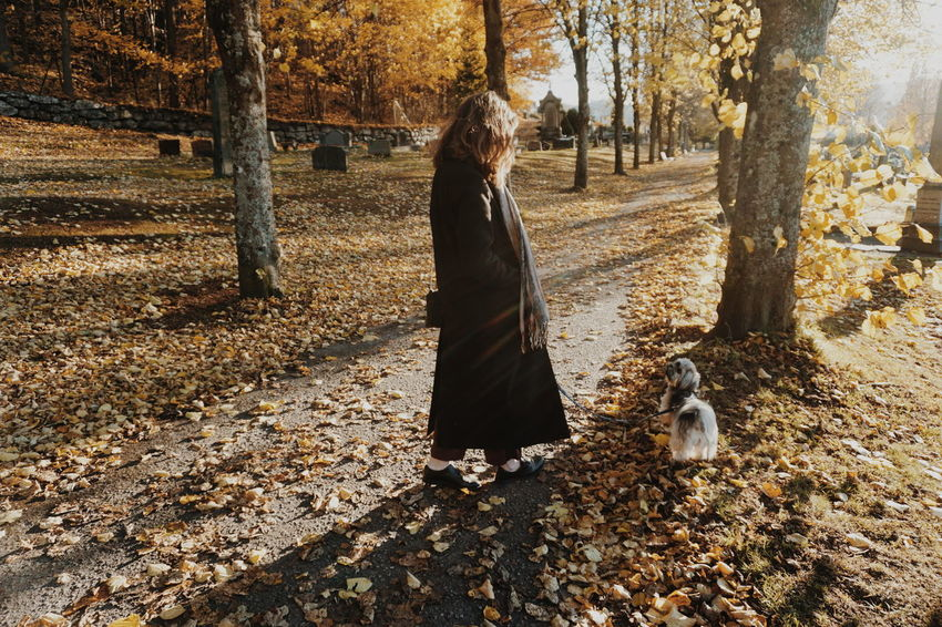 Tree Real People One Person Nature Full Length Outdoors Beauty In Nature Nature Fall Fall Beauty Fall Colors Autumn Colors Autumn Autumn Collection Walk The Dog Dog Fall Leaves Leafs Trees Fall Collection Autumn Leaves Togetherness