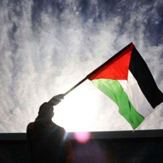 Gazaunderattack GazzedeKatliamVar Gazze yanıyor! Ümmet yanıyor! Yürek yanıyor! Allah'ım şu mübarek günler hurmetine israili ve köpeklerini kahreyle.Allah'ım şu sahur vakti hürmetine israili kahreyle.Allah'ım biz günahkar olduk.Biz bize zulmettik, düşman, kardeslerimize zulmediyor.Allah'ım bizi affeyle ve bu zulümden kardeslerimizi muhafaza eyle.
