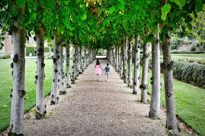 In A Row Tree Full Length Walking Rear View Outdoors Day Growth Green Color Nature Real People EyeEm Nature Lover EyeEm Best Shots Grass