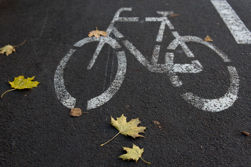 Bicycle road sign on street. Autumn Autumn Leafs Traffic Bicycle Bicycle Road Fall Leaf No People Outdoors Road Traffic Sign