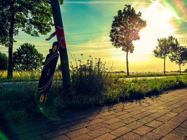 Grass Green Green Color Lighters Longboard Nature Nature Photography Nice Atmosphere Sky And Clouds Sunlight Sunset_collection Trees Blue Sky Creative Flare Germany Green Grass Longboarding Nature_collection No People Street Sunset Trees And Nature Trees And Sky Yellow Sky
