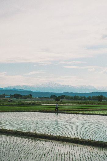 Full length of farmer on farm against sky