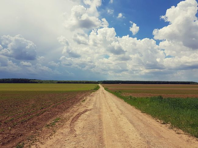 The way home...Agriculture Cloud - Sky Rural Scene Growth Field Sky Crop  Nature Cereal Plant Beauty In Nature Landscape Day Scenics Outdoors Freshness No People Food Slavonija Hrvatska Croatia