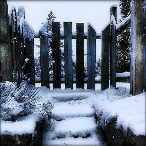 Enjoying the Beautiful things in Life . Snow Gate path cold freezing ice brr pixlromatic cellphonephotography pictureoftheday picoftheday photooftheday portorchardwashington droidmaxx
