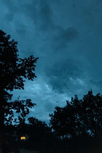Tree Plant Sky Cloud - Sky Beauty In Nature Low Angle View Silhouette Nature Tranquility Scenics - Nature No People Tranquil Scene Growth Outdoors Night Dusk Non-urban Scene Idyllic Storm Power In Nature Gewitter Sturm Himmel Abend Blaue Stunde