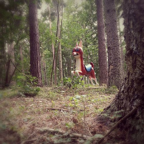 Mixranch Discgolf Gotland Bambi